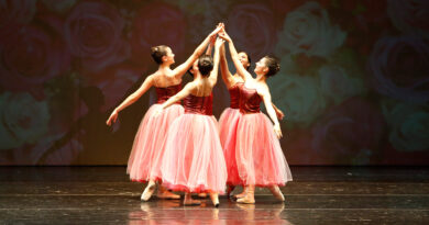 Seminario Virtual de Ballet durante las vacaciones